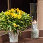 Blumenschmuck in der Spitalkirche